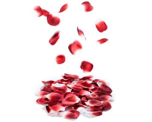 Ароматизированные лепестки роз ROSE PETAL EXPLOSION 100 шт. Bijoux Indiscrets (Испания)