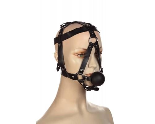 Сбруя на голову с кляпом шариком